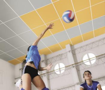 Acoustichoc - řešení pro tělocvičny